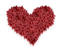 Valentines day heart Royalty Free Stock Image
