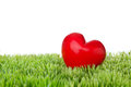 Valentines day red heart lying in grass for Stock Photography