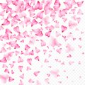 Valentines Day romantic background of pink hearts petals falling. Realistic flower petal in shape of heart confetti. Love. Wedding Royalty Free Stock Photo