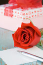 Valentines day rose Stock Photo