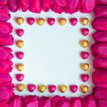 Valentines or mothers day frame stock photos tulips and chocolates pink tulip flowers and heart shaped candies on white paper Stock Photos