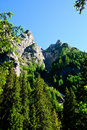 A valey from Bucegi Royalty Free Stock Photo