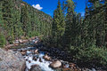 Vallecito trail weminuche wilderness clorado the winds along the creek through the picturesque Stock Photos