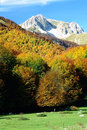 Vallefiorita, autumn landscape, Monte Meta Royalty Free Stock Photo