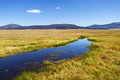 Valles Caldera National Preserve Stock Photos