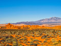 Valley of fire state park nevada red rock formations in usa with snow capped mountains in the background Royalty Free Stock Photography