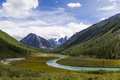 Valley of the mountain river altai shavla Stock Photography