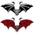 Vampire Bat Stock Images