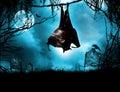 Vampire bat hanging over grave Royalty Free Stock Photo