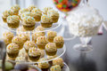 Vanilla bean mini cupcakes decorated with cyan & pink candy beads on a clear tiered tray on a dessert table with marshmallows, j Royalty Free Stock Photo