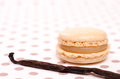 Vanilla bean and sweet macaron Stock Photo