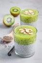 Vanilla chia pudding with kiwi, layered dessert, concrete background Royalty Free Stock Photo
