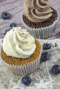 Vanilla and chocolate cupcakes with blueberries Royalty Free Stock Photo