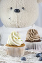Vanilla and chocolate cupcakes with blueberries and toy bear Royalty Free Stock Photo