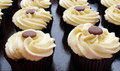Vanilla cup cakes Stock Image