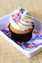 Vanilla Cupcake Royalty Free Stock Images