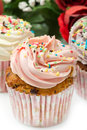 Vanilla cupcakes Royalty Free Stock Photos