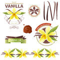 Vanilla design elements with flowers Stock Image