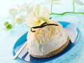 Vanilla ice cream with biscuit Royalty Free Stock Images