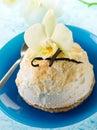 Vanilla ice cream with biscuit Stock Images