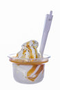 Vanilla ice cream with caramel topping dressing Stock Photo