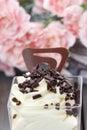 Vanilla ice cream with chocolate sprinkles Royalty Free Stock Photo