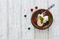 Vanilla ice cream with fresh berries Royalty Free Stock Photo