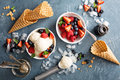 Vanilla ice cream scoops with berries Royalty Free Stock Photo