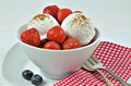 Vanilla Ice Cream with Strawberries and Blueberries Royalty Free Stock Photo