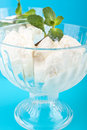 Vanilla ice cream two cups with decorated with fresh mint Stock Image