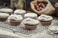 Vanilla muffins decorated with icing sugar on old wooden table Royalty Free Stock Photo