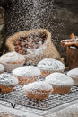 Vanilla muffins decorated with powder sugar on old wooden table Royalty Free Stock Image