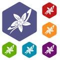 Vanilla sticks with a flower icons set hexagon
