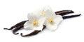 Vanilla sticks with flowers Royalty Free Stock Photo