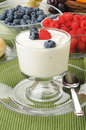 Vanilla yogurt with fresh berries Stock Photos