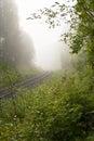 Vanishing rails one lane railway in fog Stock Images