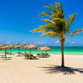Varadero beach in cuba with a coconut tree view of umbrellas and beautiful turquoise ocean Stock Photography