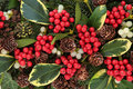 Variegated holly winter and christmas abstract background with ivy mistletoe and winter greenery Royalty Free Stock Image