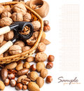 Varieties of nuts Royalty Free Stock Photos