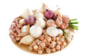 Varieties of onions Royalty Free Stock Photography
