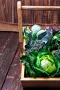 Variety of cabbages in wooden basket on brown background. Harvest. Close up. Royalty Free Stock Photo