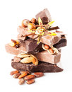 Variety of chocolate pieces with filberts almond raisins peanuts cocoa beans vanilla sticks and flower isolated on white Royalty Free Stock Photos