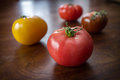 Variety heirloom tomatoes colorful juicy or heritage on wooden table Stock Images