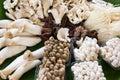 Variety of Mushrooms background Royalty Free Stock Photo