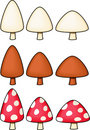 Variety of Mushrooms - vector illustrations Royalty Free Stock Images