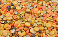 Variety of pulses close up pile different types split Royalty Free Stock Image