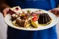Variety of raw vegan desserts Royalty Free Stock Photo