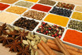 Variety of spices. Royalty Free Stock Photo