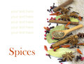 A variety of spices  isolated Royalty Free Stock Images