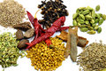 Variety of spices for kitchen Royalty Free Stock Photo